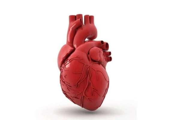 На потенцию влияют болезни сердца