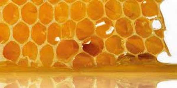 Пчелиный клей для потенции