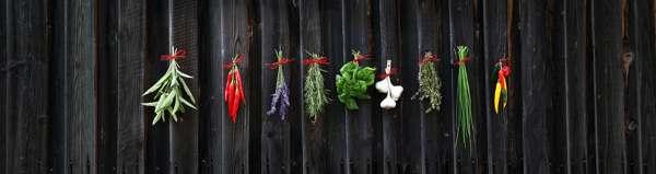 Травы и специи как афродизиаки для потенции